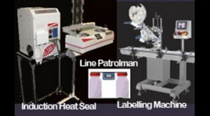 Induction and Labelling